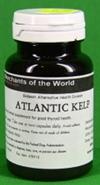 Atlantic Kelp